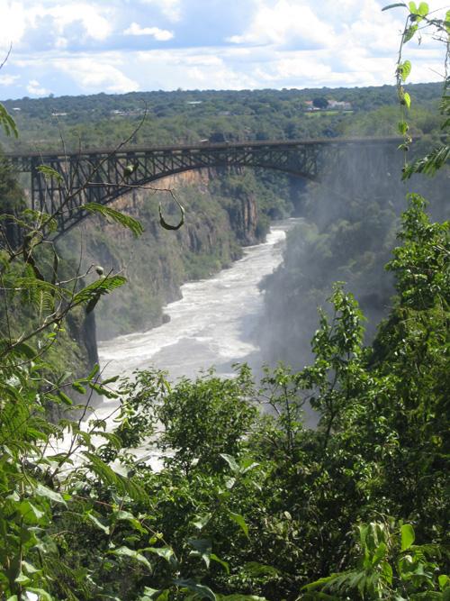 Bridge in Africa