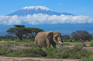 Kenya packing list