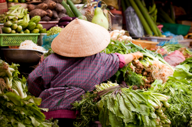 Vietnam Travel Safety Tips