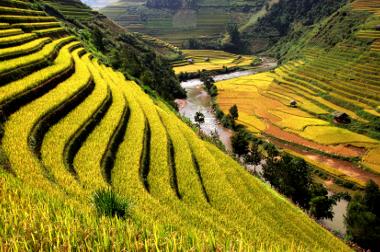 Vietnam Travel Wellness Tips