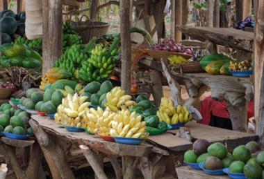 Uganda packing list
