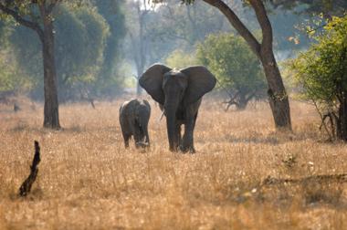 Zambia Travel Safety Tips