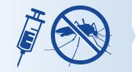 Dengue vaccination is key