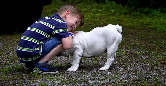 boy-with-dog-courtesy-of-Pixabay