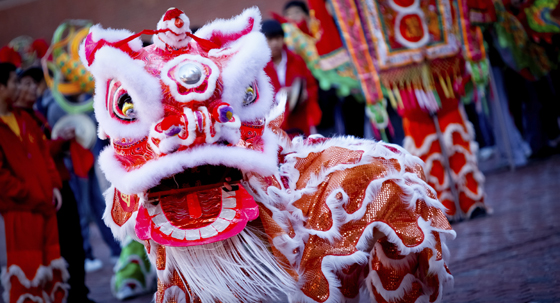 Ceremonial dragon dance during lunar new year celebrations