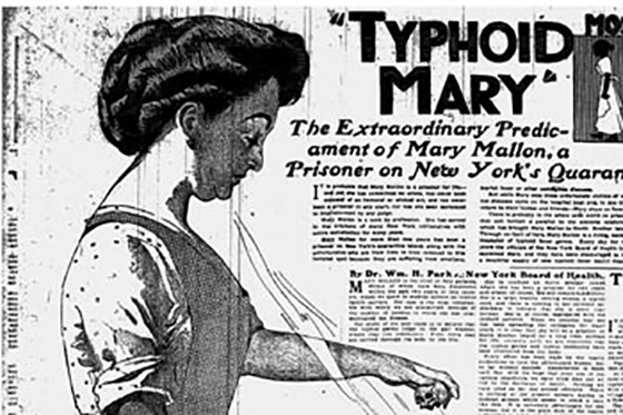 Typhoid Mary Page