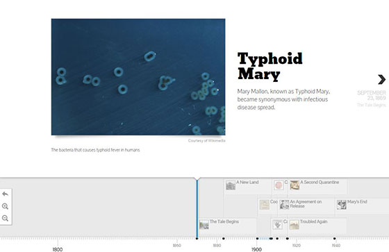 Typhoid Mary Timeline