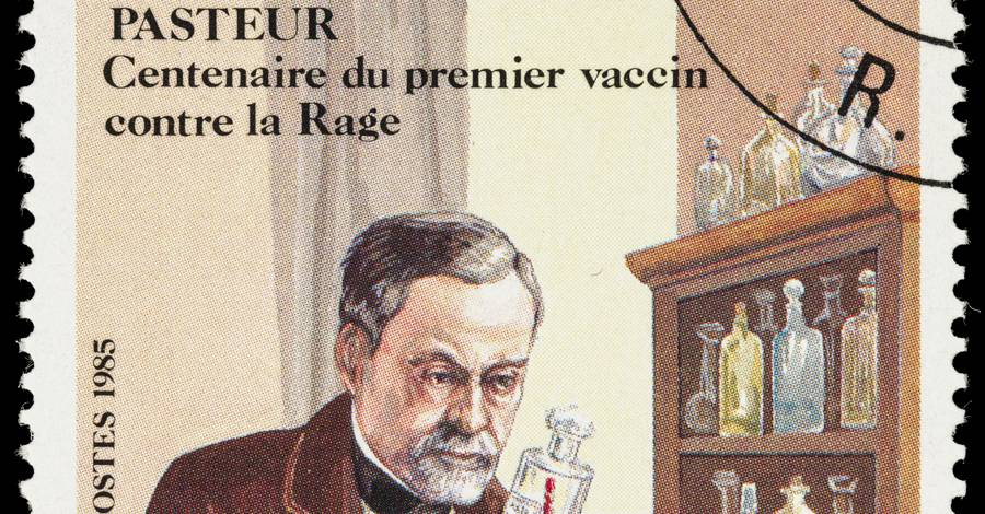 Louis Pasteur Anthrax And Rabies