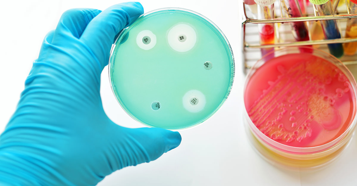 Antibiotic-resistant disease are on the rise but, vaccinations may be able to halt their spread.