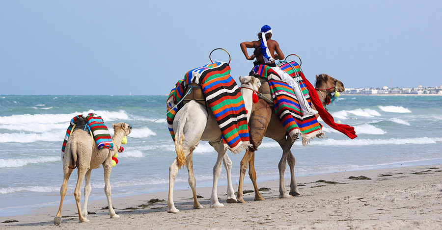 Tunisia is a great destination for all types of travelers.
