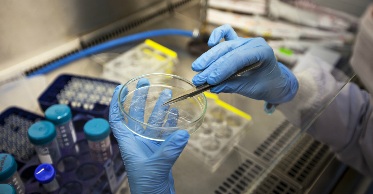 This breakthrough could make vaccines cheaper and easier to attain in impoverished regions.