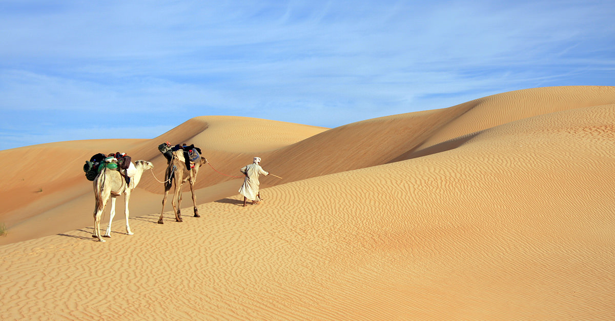 Mauritania is a fantastic destination with so much to do. Make sure you explore it safely with travel vaccines and advice from Passport Health.