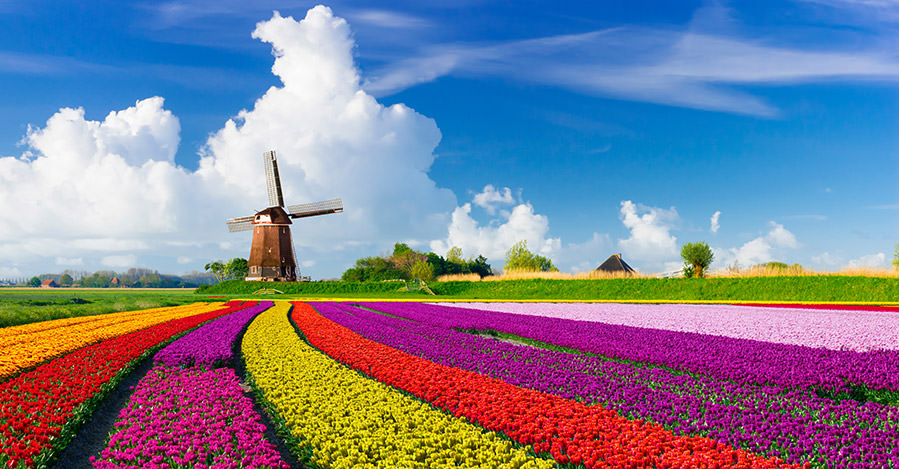 Netherlands has many urban and rural areas to explore. Make sure you explore them safely with travel vaccines and advice from Passport Health.