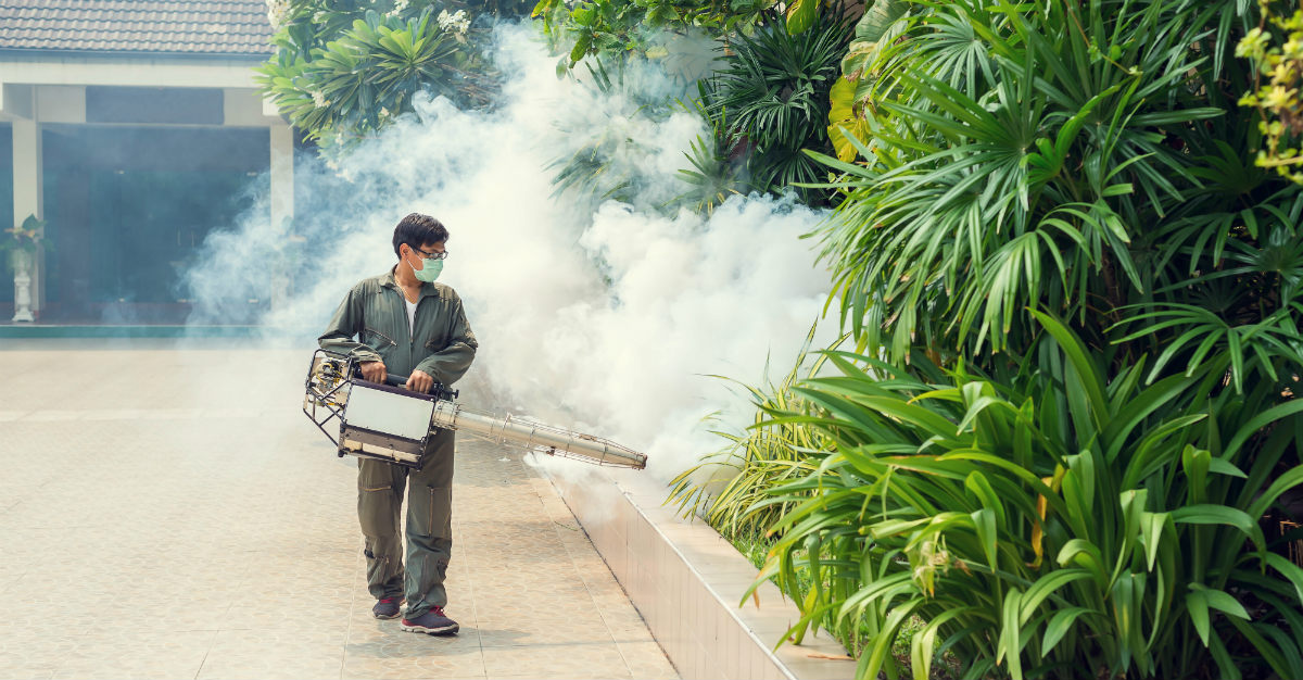 With over 100,000 cases this year, the dengue problem in Sri Lanka is worse than ever before.