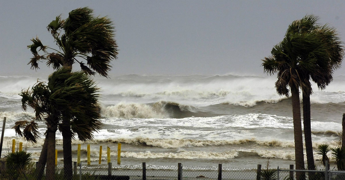 Beyond just damage to structures, hurricanes increase the risk of disease.