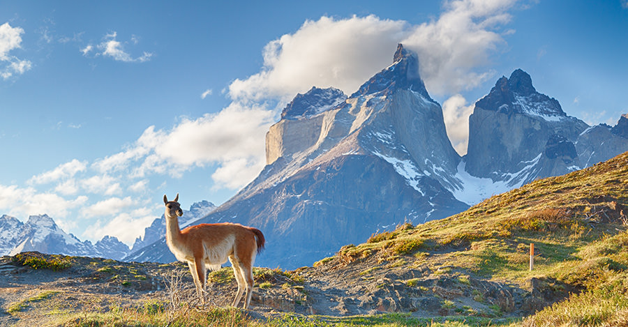 On the coast of South America, Chile is a fantastic destination. Make sure you're ready for your trip with travel vaccines and advice from Passport Health.