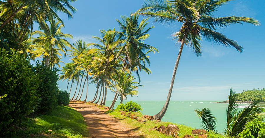 From beaches to rockets, French Guiana is a unique destination.