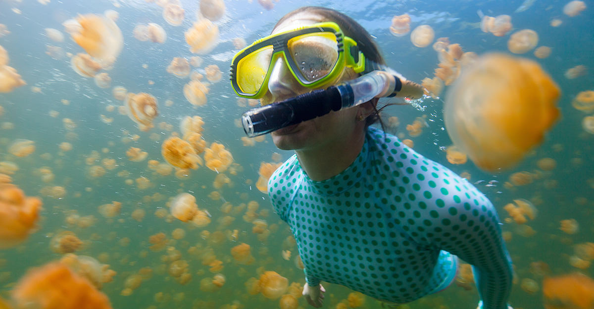 From swimming with jellyfish to fantastic beaches, Palau is a great destination. Just don't forget your typhoid and hepatitis A vaccinations as both diseases are common in the area.