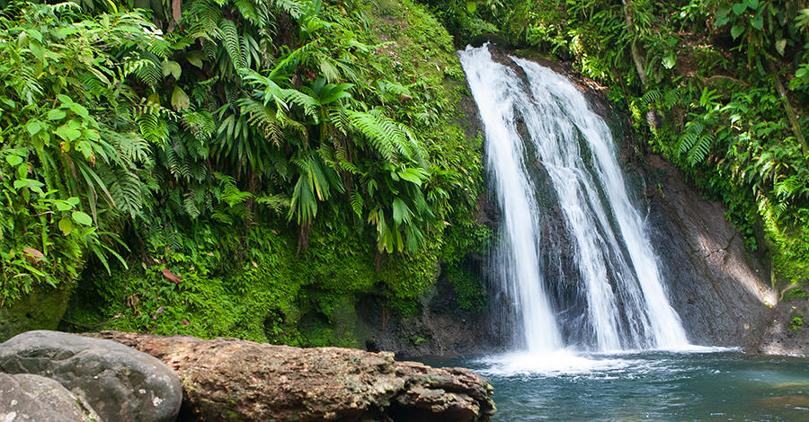 Travel safely to Guadeloupe with Passport Health's travel vaccinations and advice.