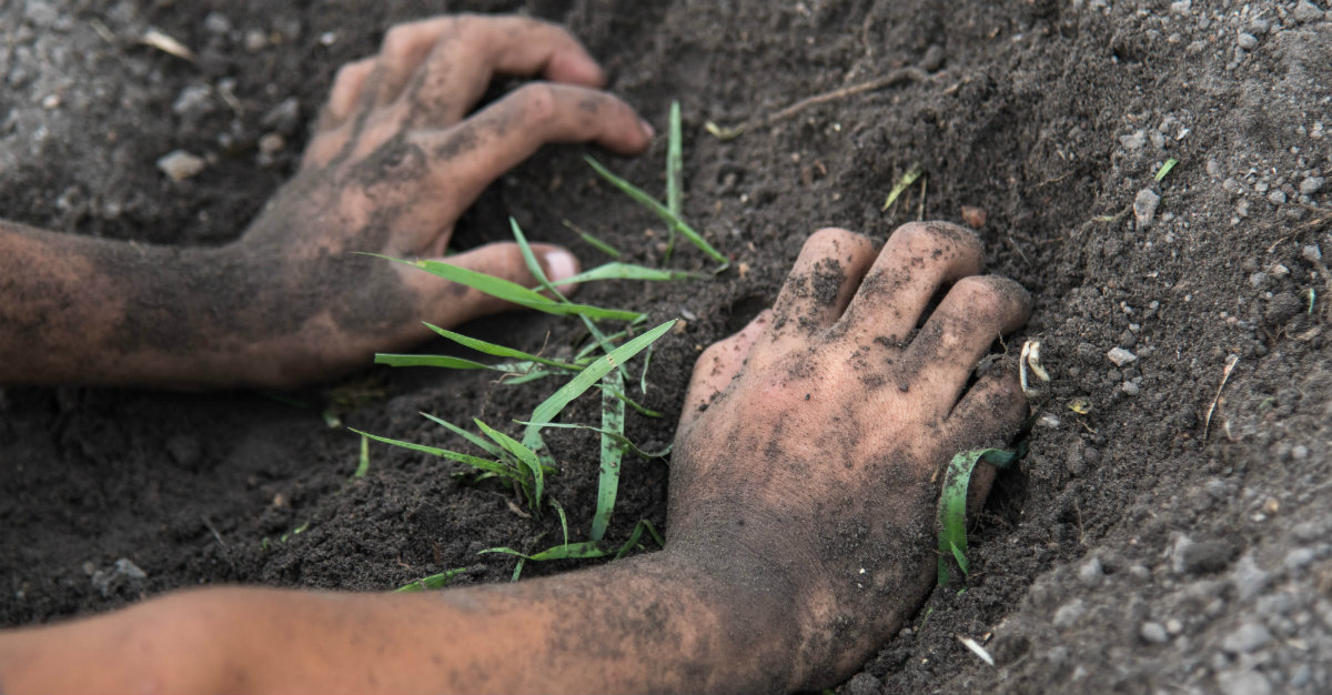 Contaminated soil can harbor bacterium for this deadly disease.