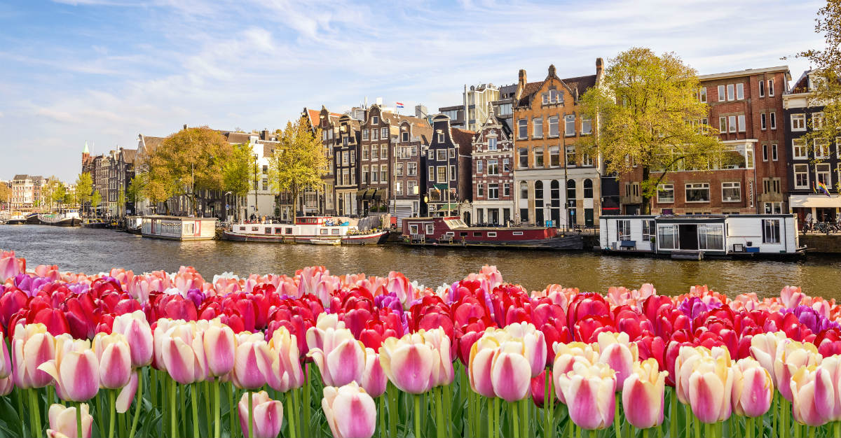 The airport alone might make a stopover in Amsterdam worth it.
