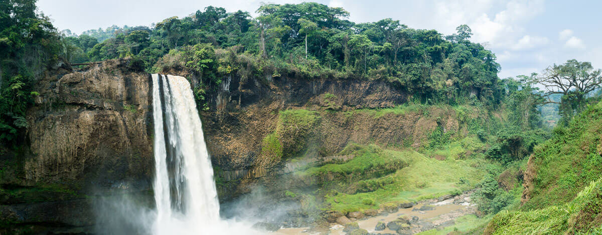 Cameroon Visa Passport Health Passports And Visas