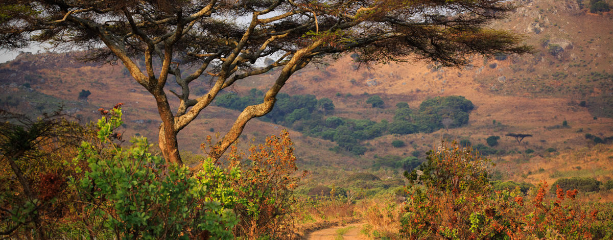 A visa is required for entry into Malawi. Get your's today!