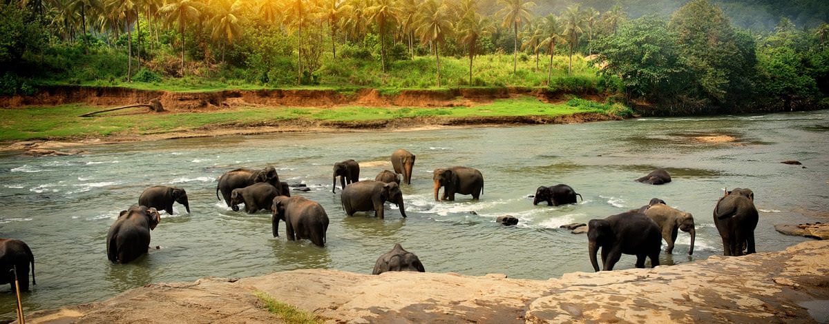 A visa is required for entry into Sri Lanka. Get your's today!