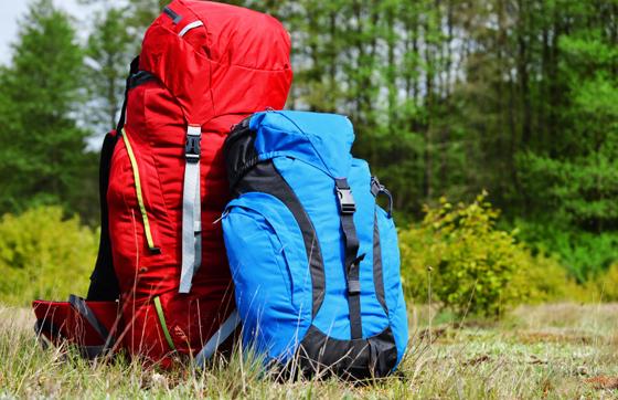 Traveler's bags