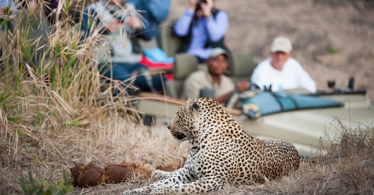 Changes to visas could provide a much needed boost for South African tourism.