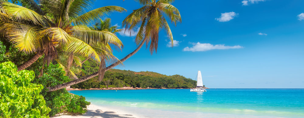 Travel safely to Jamaica with Passport Health's travel vaccinations and advice.