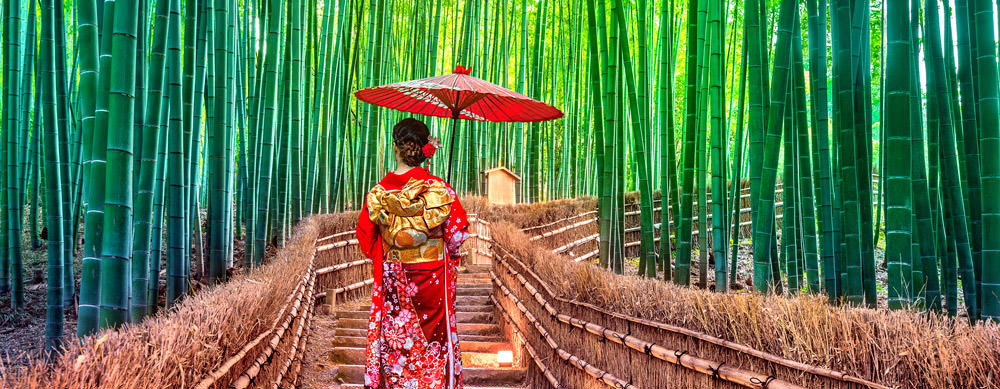 Travel safely to Japan with Passport Health's travel vaccinations and advice.