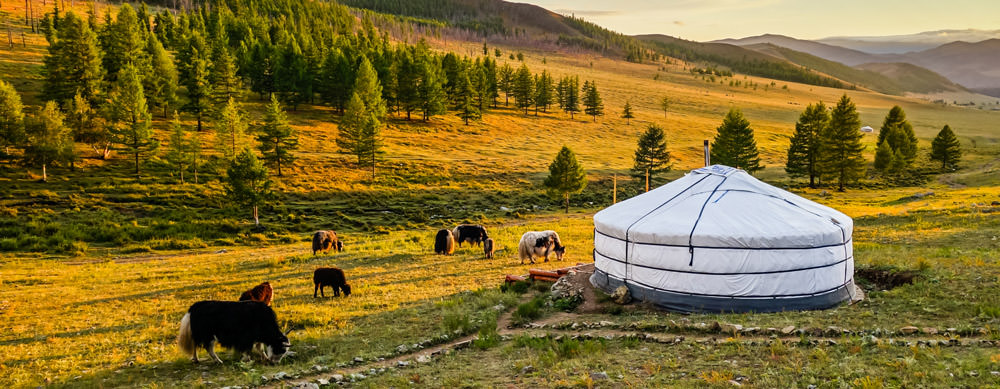 Travel safely to Mongolia with Passport Health's travel vaccinations and advice.