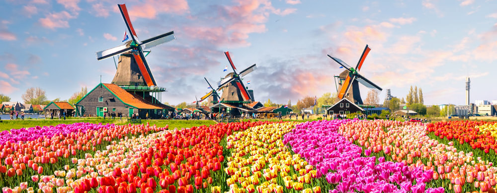 From windmills to tulips, the Netherlands has something for everyone. Visit Passport Health to ensure you travel safely.