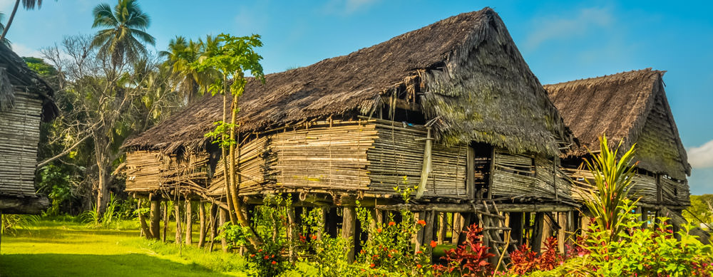 Travel safely to Papua New Guinea with Passport Health's travel vaccinations and advice.