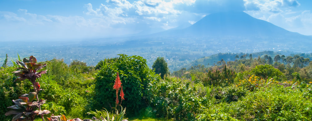 Travel safely to Rwanda with Passport Health's travel vaccinations and advice.