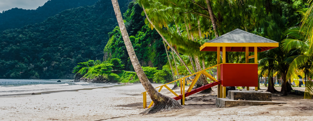 Travel safely to Trinidad and Tobago with Passport Health's travel vaccinations and advice.