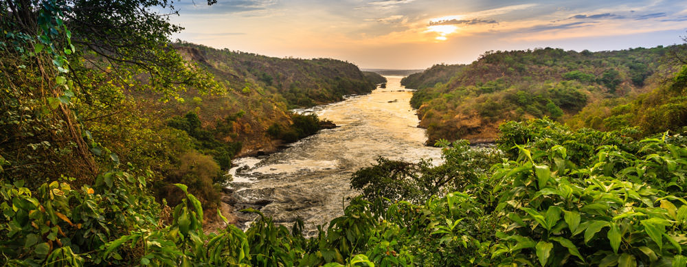 Jungles, rivers and more are must-sees in Uganda. Passport Health's travel vaccination services will help you stay safe while there.