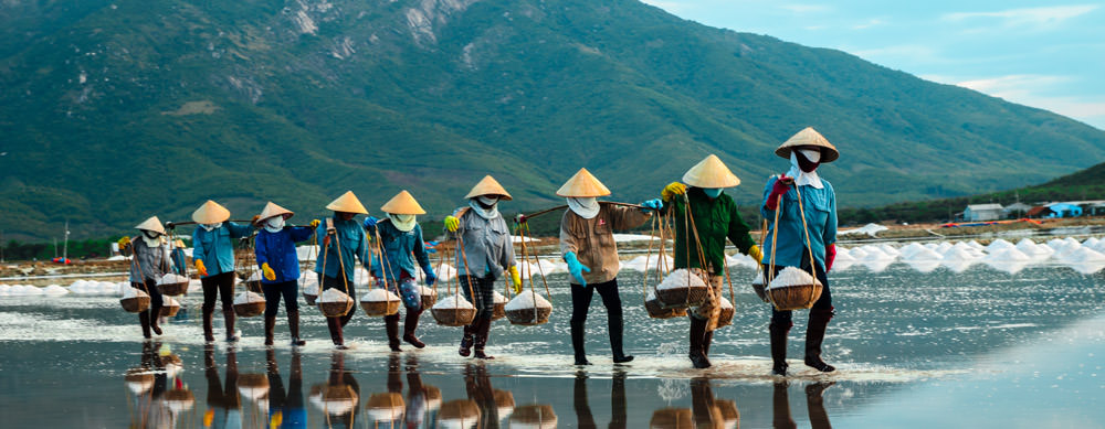 Rice paddies and nature beauty are hallmarks of Vietnam. Visit them safely with Passport Health premier vaccination services.