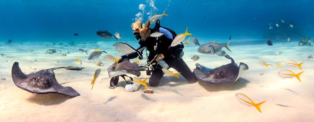 The Cayman's are known for their SCUBA diving and underwater sights. Enjoy it all worry-free with help from Passport Health's travel health services.