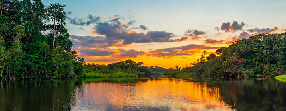 Calm riversides and serene scenes dot Guyana. Enjoy it without worry with Passport Health's premiere travel vaccination and medication services.