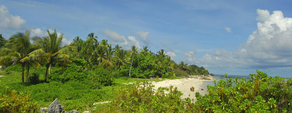 Tranquil beaches and amazing sights make Nauru a must visit. Passport Health offers vaccines and more to help you travel safely.
